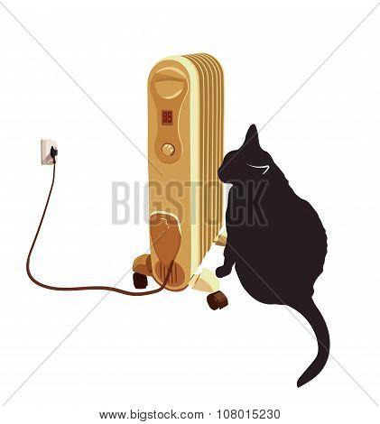Black cat basking near the heater