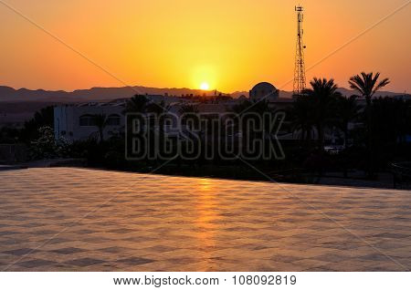 palms and sunset marsa alam