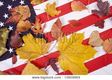 Patriotic Autumn Colors