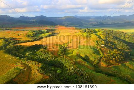 Aerial view to rural landscape with sugar cane fields on Mauritius Island.