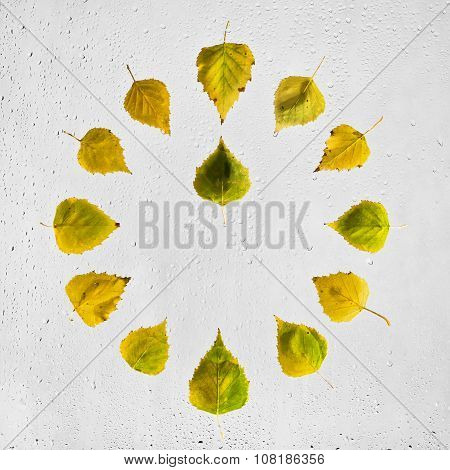 Clock stacked with colorful autumn beech leaves on the wet glass.Twelve o'clock.Noon. Midday