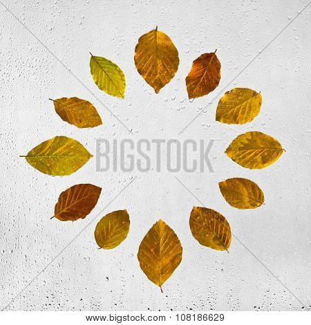 Clock stacked with colorful autumn beech leaves on the wet glass.  The dial .