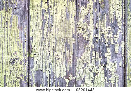 Green Tacky Wooden Texture Background
