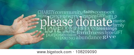 Please donate fund raising word cloud
