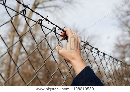 Woman Reaching For Barbed Wire Fence