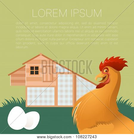 Henhouse banner with rooster