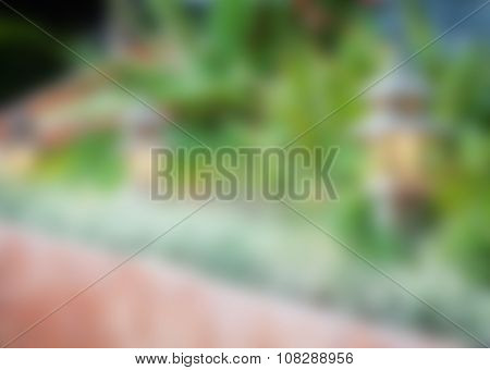 Abstract Blur Background From Garden
