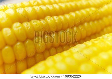 Corn Cob Details