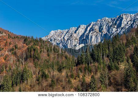 Piatra Craiului Mountain In Autumn