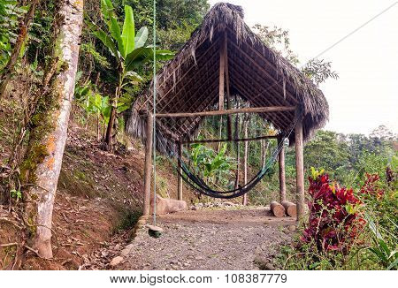 Suspended Hammock In Amazonian Jungle