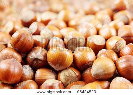 Hazelnuts macro with small depth of field