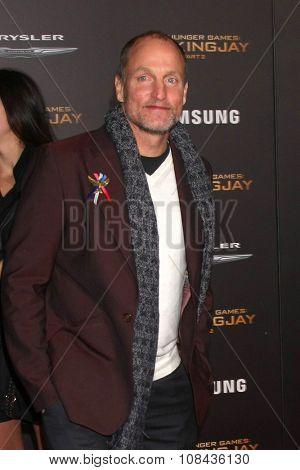 LOS ANGELES - NOV 16:  Woody Harrelson at the