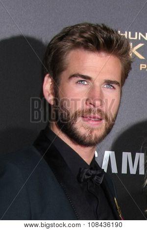 LOS ANGELES - NOV 16:  Liam Hemsworth at the