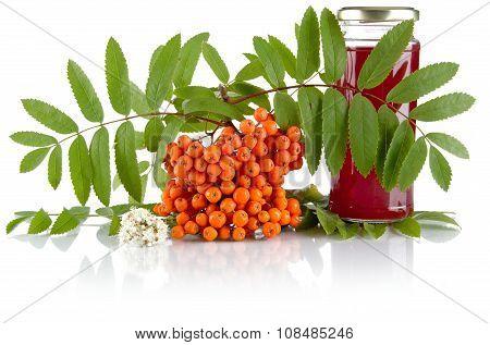Orange Rowanberry With Jar Of Juice Isolated On White Background