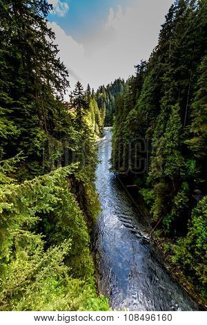 A Beautiful Blue River in a Primeval Rain Forest