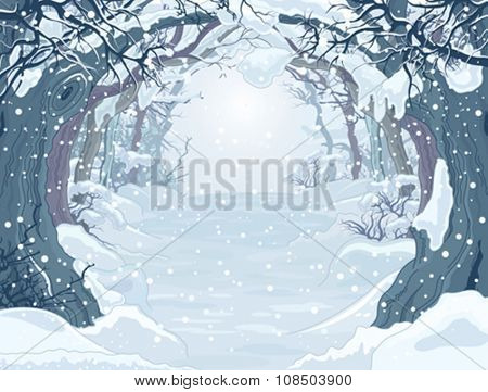 Winter forest landscape with trees