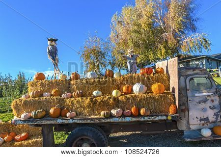 Pumpkin Truck Scarecrows White Orange Yellow Pumpkins Squash