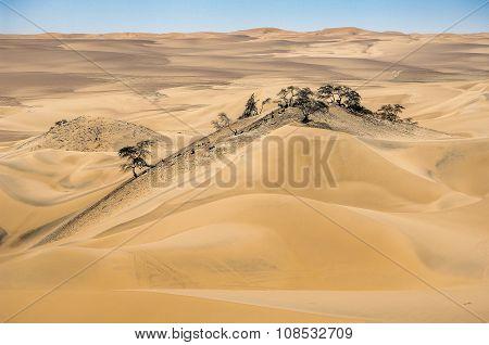 Nazca Desert Sand Dunes In Peru.