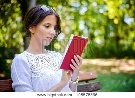 Woman Reading An Interesting Book In The Park