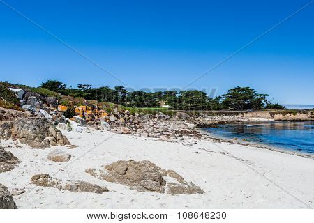 Sandy Beach Near Cypress Point
