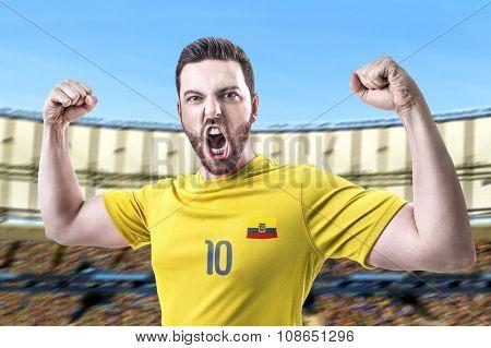 Ecuadorian soccer player player in the stadium
