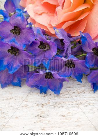 Orange Rose And Blue Larkspur On The White Painted Background