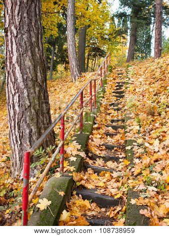 Stairs Decorated With Fallen Leaves
