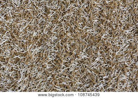 Beige Shaggy Carpet Texture Background