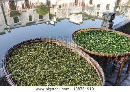 Vegetables drying at Hongcun, Ancient village in south China.