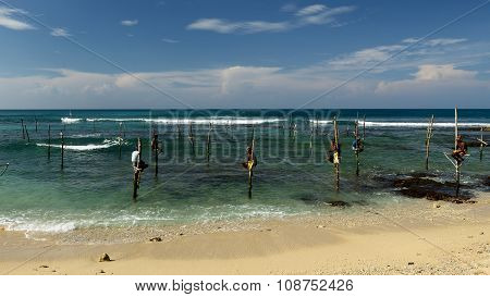 Fishermen On Stilts On The Coast Of Sri Lanka