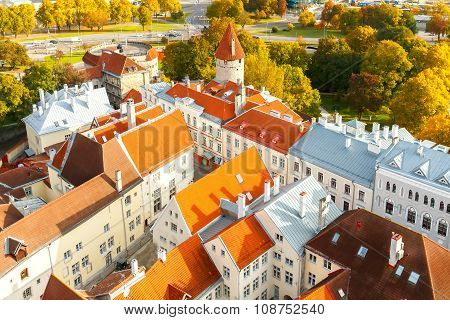 Tallinn, Estonia. View of the old city, streets and rooftops from above. poster