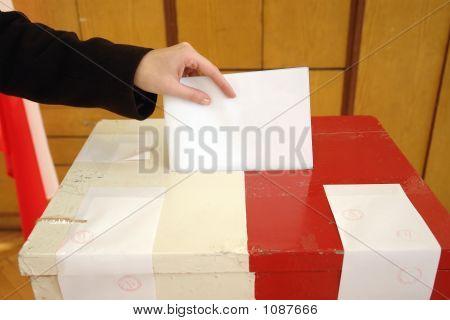Local Election Vote