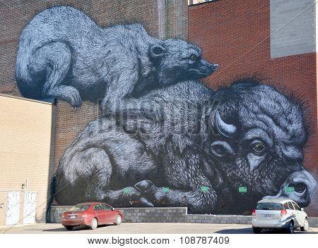 Street art bison and badger