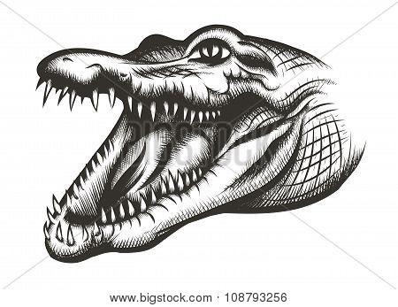 Crocodile head black