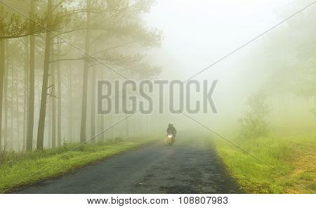 Mist unfurl on the way