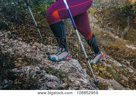 legs and walking sticks