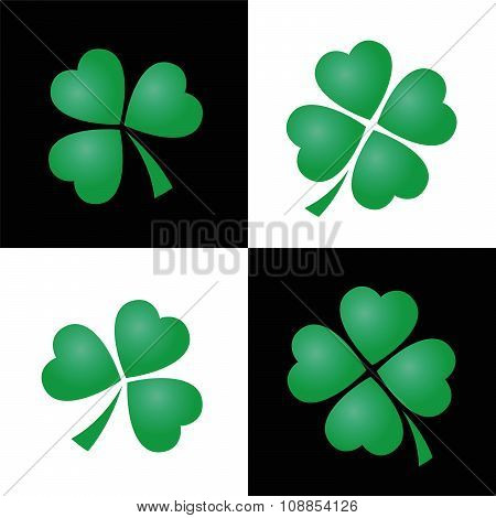Shamrocks Black White Background
