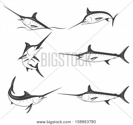 Set of monochrome vector marlins