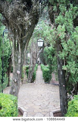 View Into The Garden Of The Chopin Museum In Valdemossa, Spain, Mallorca