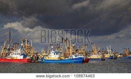 Dutch Fishing Fleet In Lauwersoog Harbor