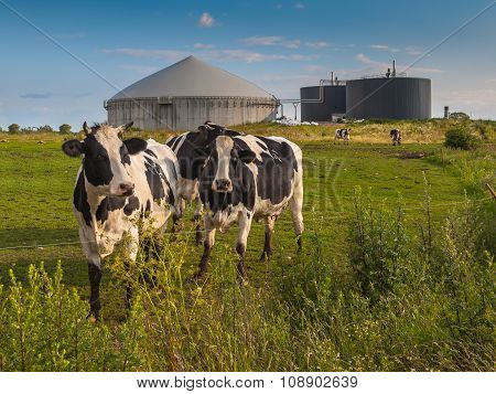 Biogas Plant On A Farm