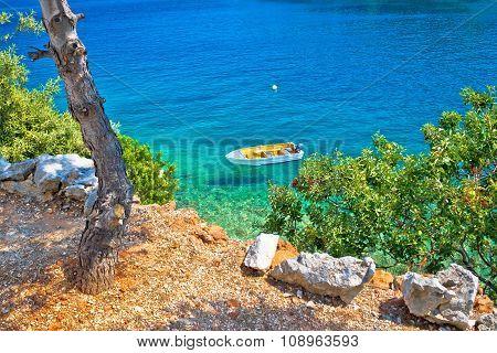 Idyllic pine tree beach in Croatia Dugi otok island poster
