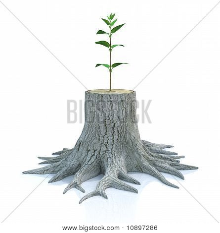 3D concept with young tree seedling grow from old stump poster