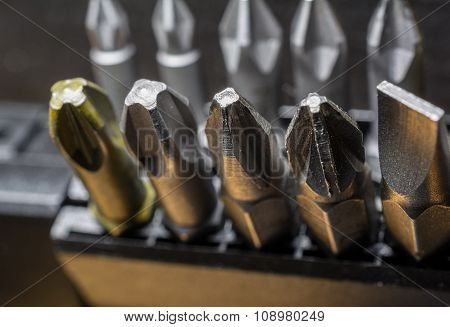 Macro Collection Of Phillips, Torx, Star And Slotted Bits 8