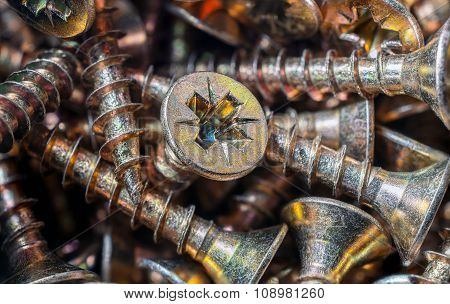 Macro Of A Collection Of Screws 2