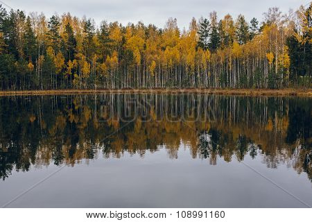 Colorful Autumn Lakeside Treeline With Reflection