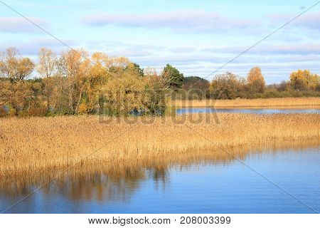 Autumn nature. Autumn forest. The autumn woods. Golden autumn. Lake in autumn forest. Autumn forest reflected in the lake in september. Autumn landscape. Russian forest in autumn. Autumn forest in Sunny day. The lake in Russia