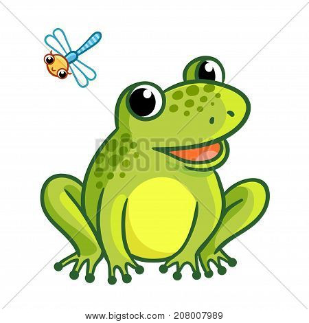 Frog is sitting on a white background. Cute illustration with dragonfly and frog in a cartoon style.
