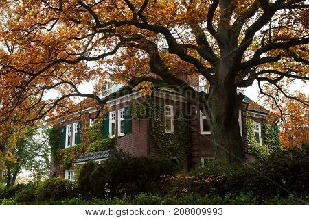 Beautiful brick house in Hamburg, Germany, with yellow orange autumn leaves on the tree
