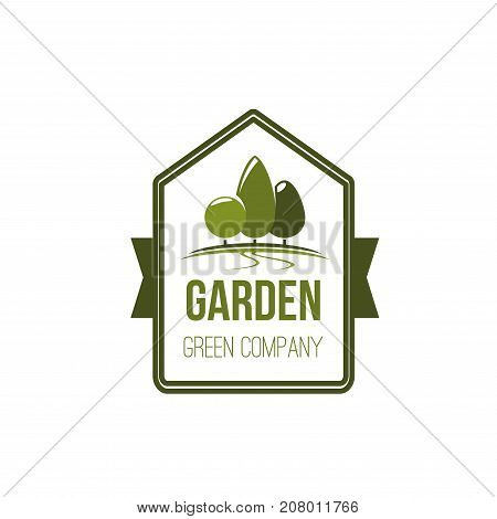 Green company icon of nature tree or park for ecology and or green environment. Vector badge and ribbon design of eco woodland square horticulture or parklands and woodlands for urban city gardening